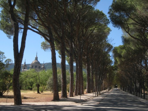 El Escorial - Walking to La Casa Del Principe
