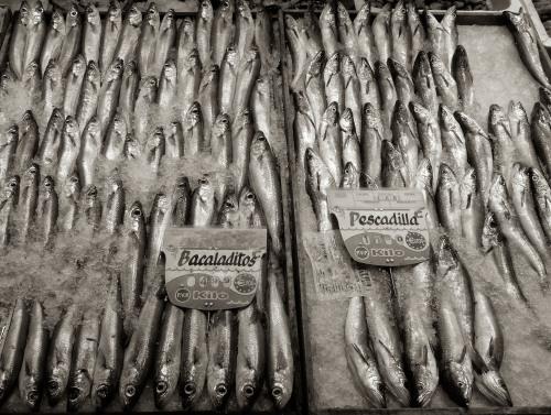 Fish Stall, Anton Martin Market, Madrid